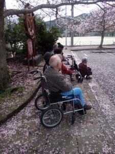 元宮公園でお花見♪